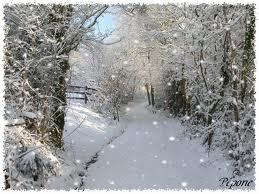 L'hiver est tout blanc